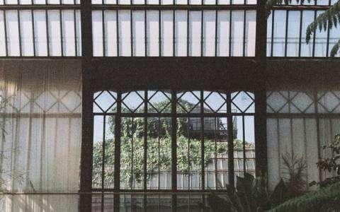Les serres du Jardin des Plantes : un petit coin de paradis
