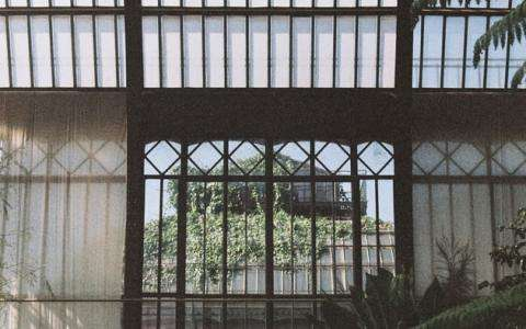 A little corner of paradise; the greenhouses of the Jardin des Plantes