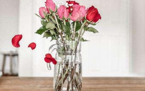 Vivez une soirée inoubliable et romantique